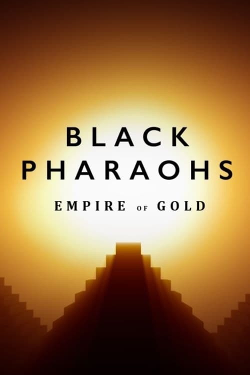 Постер фильма Black Gold 2018