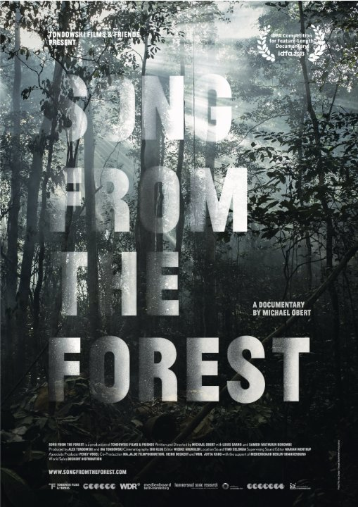 Постер фильма Song from the Forest 2013