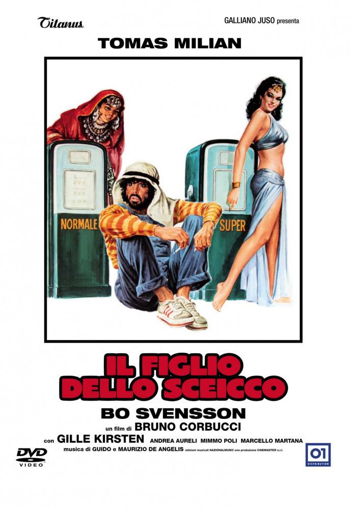Постер фильма Сын шейха 1978