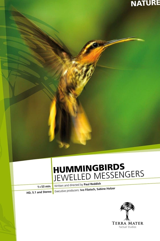 Постер фильма Hummingbirds Jewelled Messengers 2012