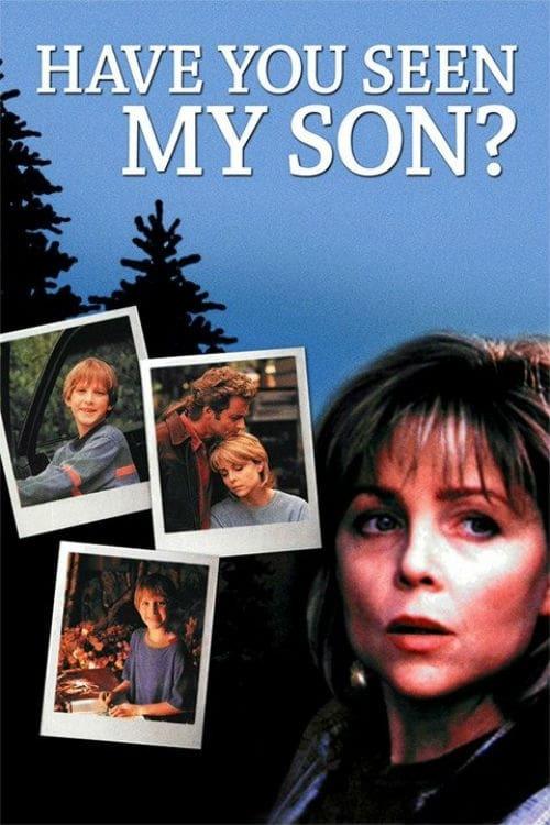 Постер фильма Вы не видели моего сына? 1996