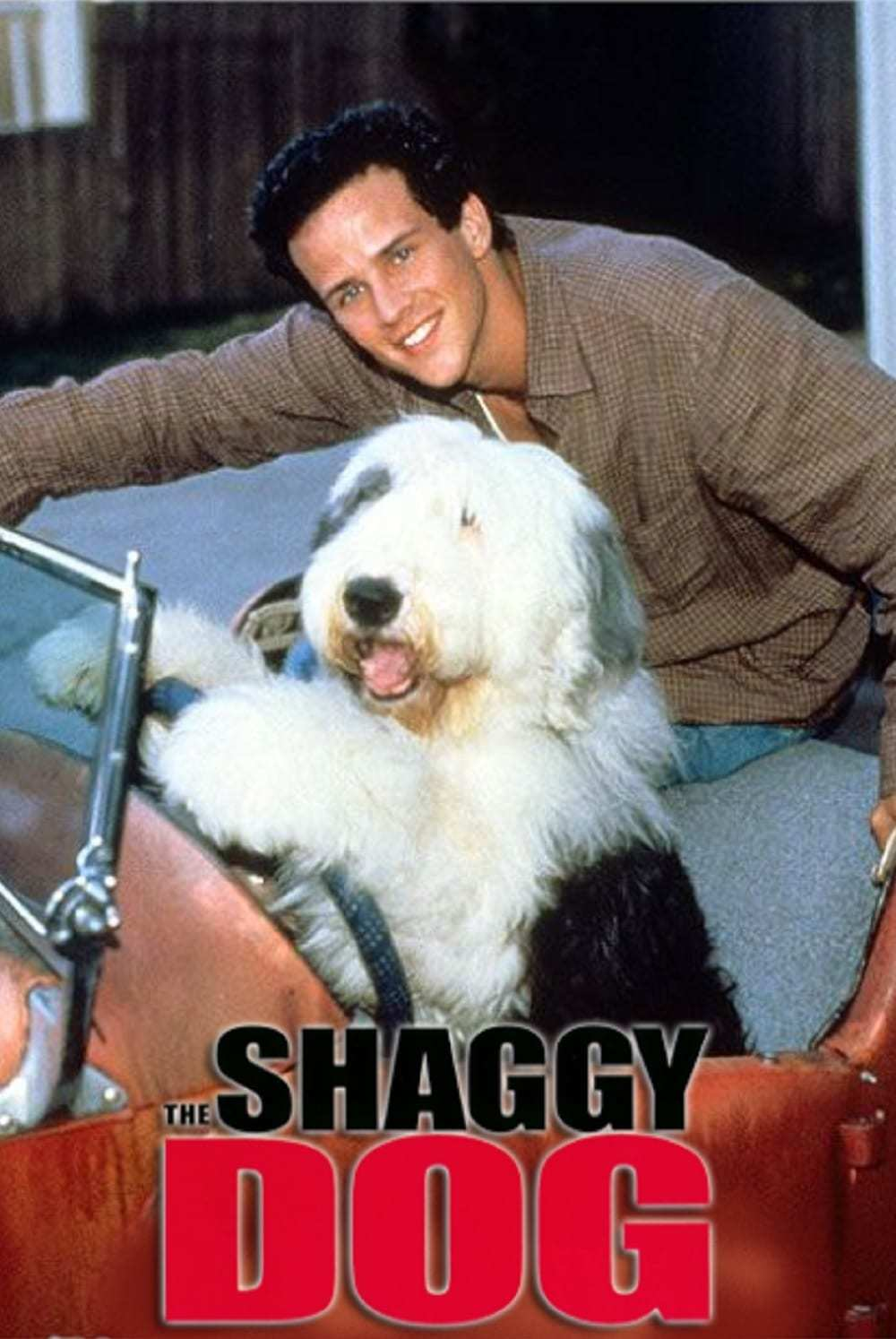 Постер фильма Лохматый пес The Shaggy Dog 1994