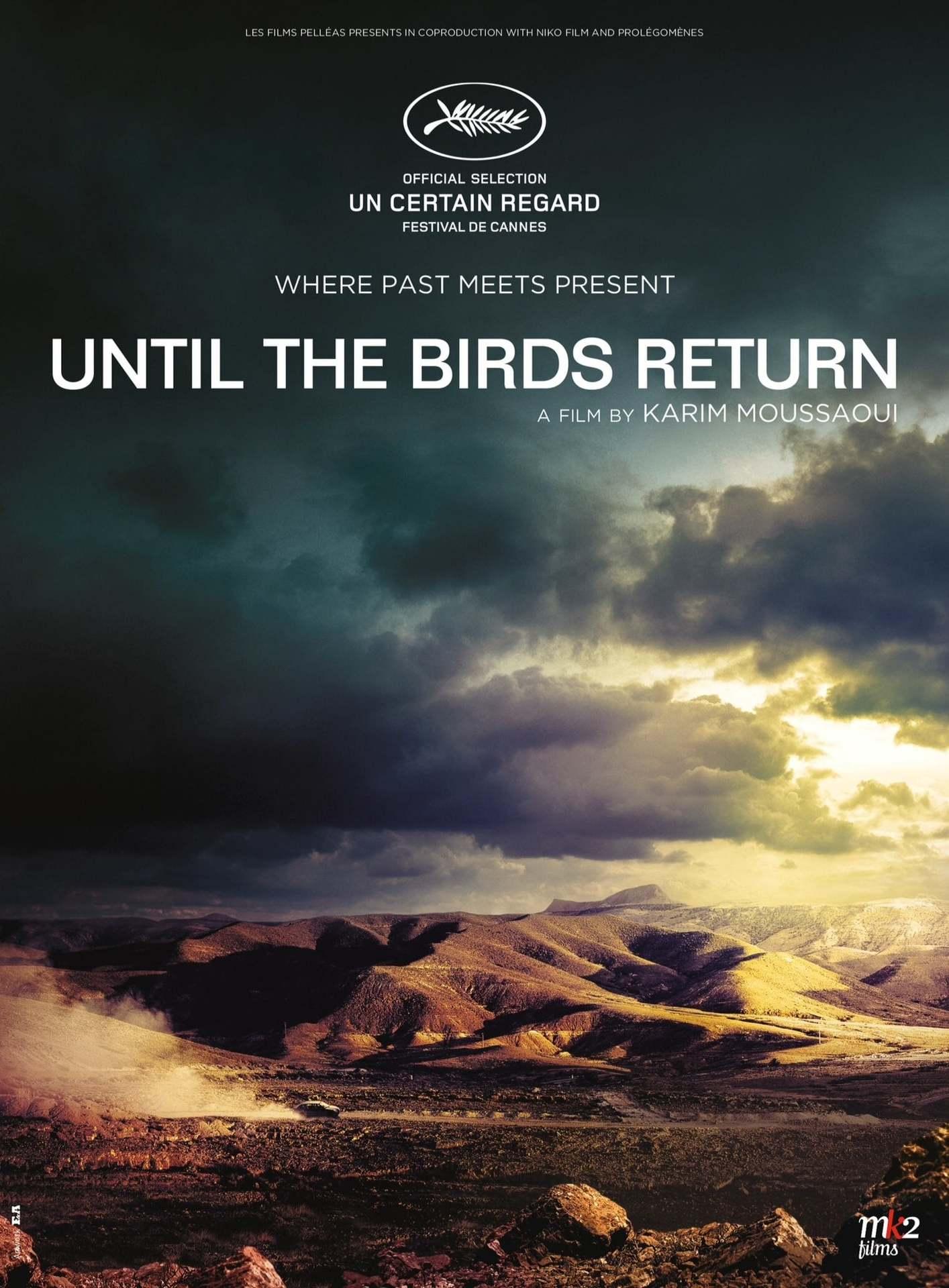 Постер фильма Когда вернутся птицы 2017