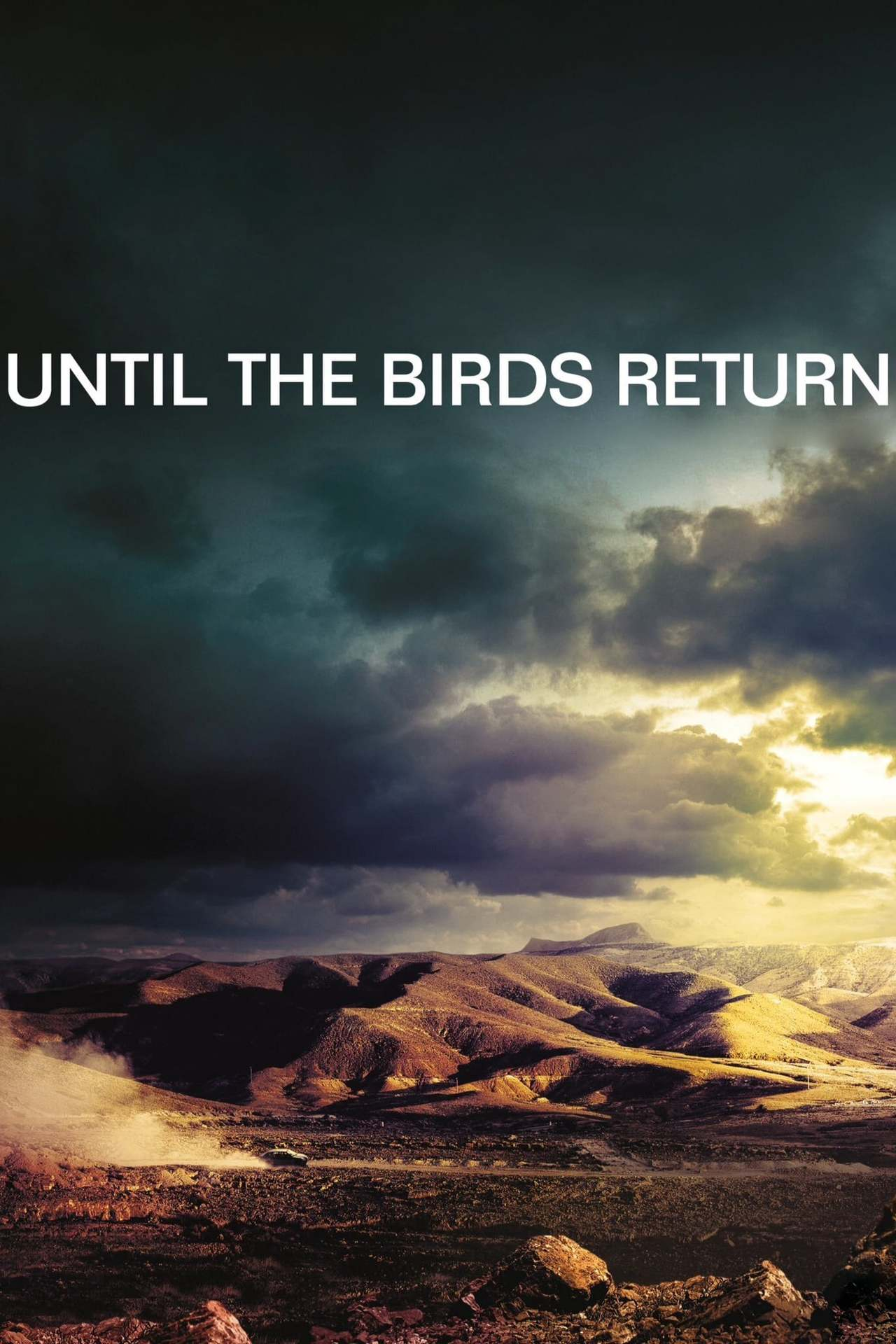 Постер фильма Когда вернутся птицы En attendant les hirondelles 2017