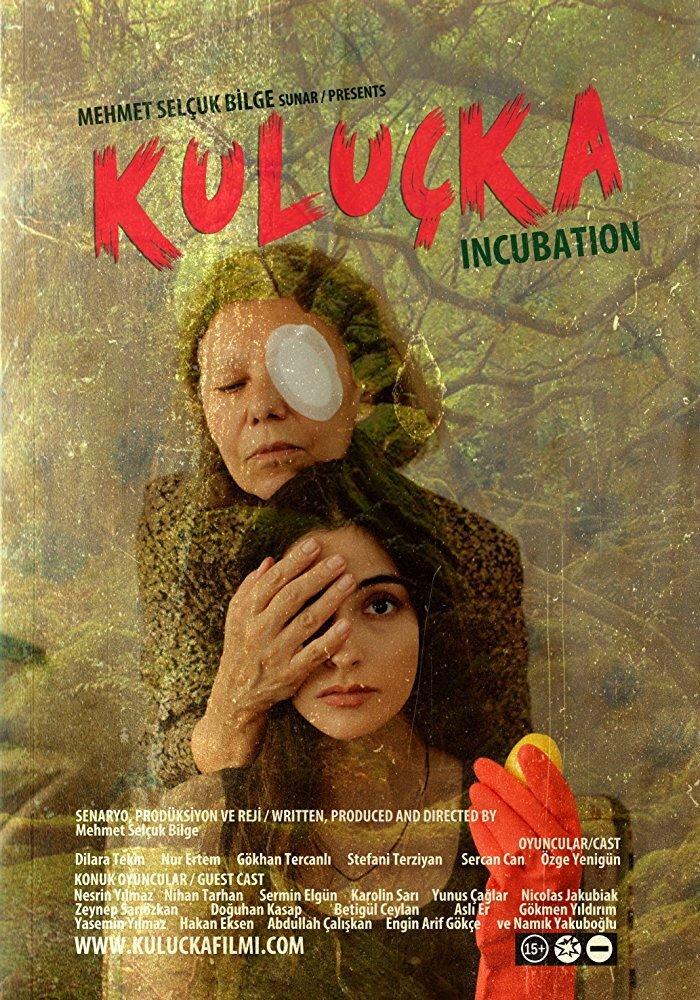 Постер фильма Инкубация 2017