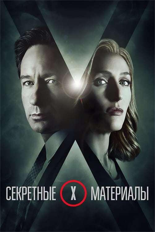 Постер фильма Секретные материалы The X Files 1993