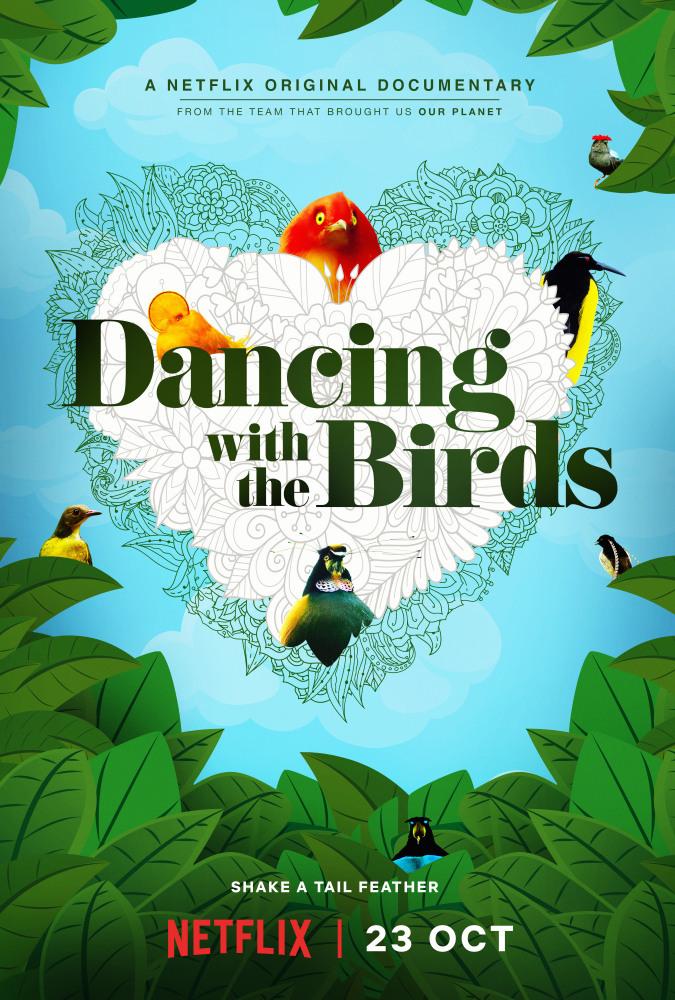 Постер фильма Танцы с птицами 2019