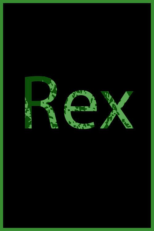 Постер фильма Rex 2017