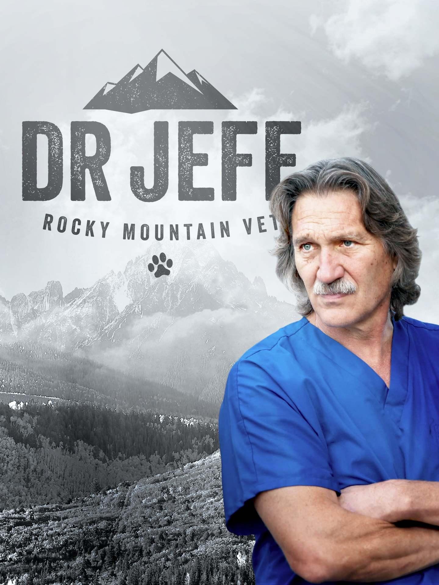 Постер фильма Dr. Jeff: Rocky Mountain Vet 2015